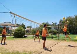 Activities Volley